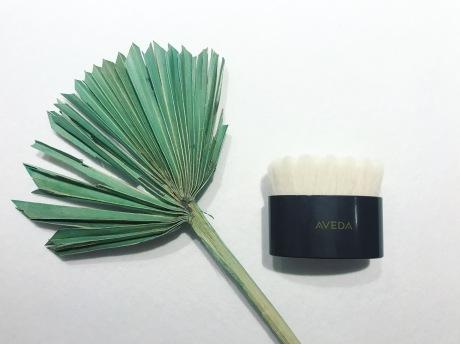facial brush, aveda, aveda skin care, skin care, exfoliation